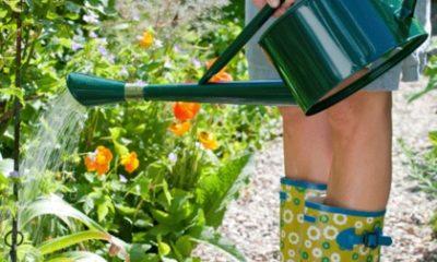Zomergezondplan: Ga de tuin in!