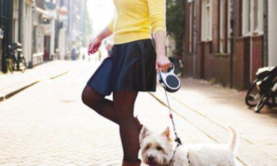 Vriendin 7: Rianne redt huisdieren uit een onveilige thuissituatie