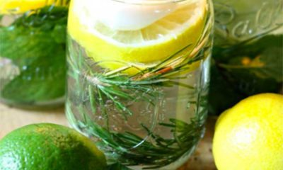 Maak je eigen citronella kaars