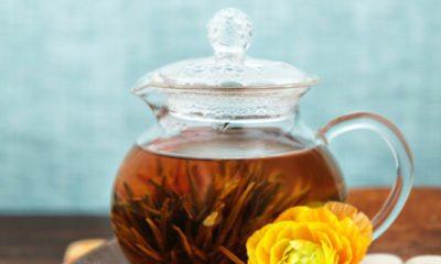 Wist jij dit over thee?