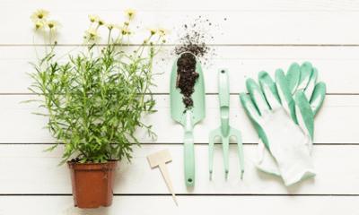 Maak een inspiratiebord voor je tuin