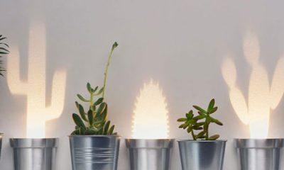 Houd je zelfs een cactus niet in leven? Dan zijn deze lampen echt iets voor jou