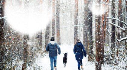 7 redenen waarom de winter best leuk is