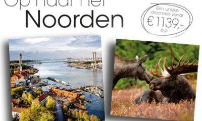 Kom genieten van de prachtige natuur in Scandinavië!
