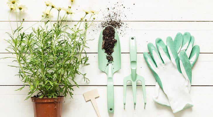 Maak Je Tuin Lenteklaar Met Deze Pinterest Ideeen Vriendin Nl