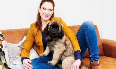 Je puppy bijten afleren: hondengedragstherapeut Michelle geeft tips