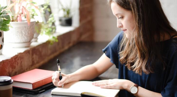 snelle dagboeken