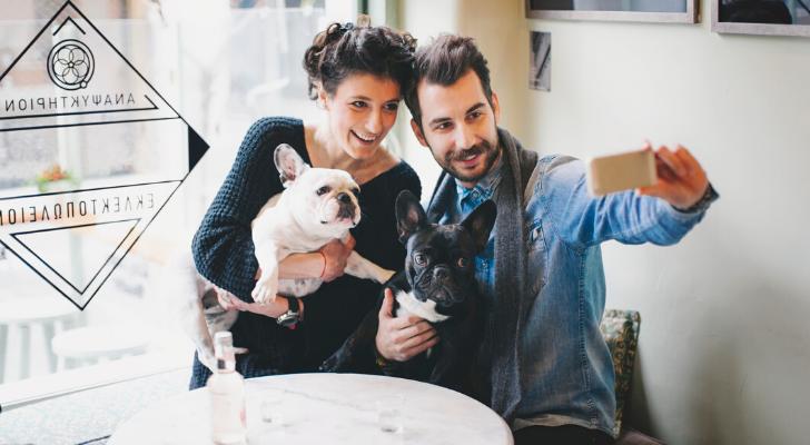 Franse bulldog eigenaars, opgelet: bij déze cocktailbar krijg je korting